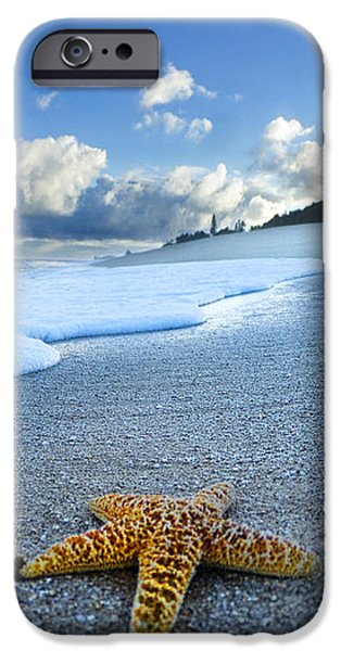 Blue Foam starfish iPhone Case by Sean Davey