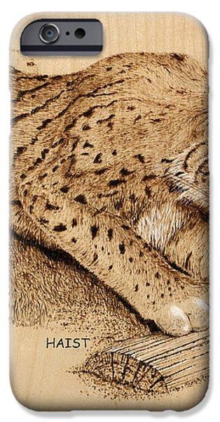 Bobcat iPhone Case by Ron Haist