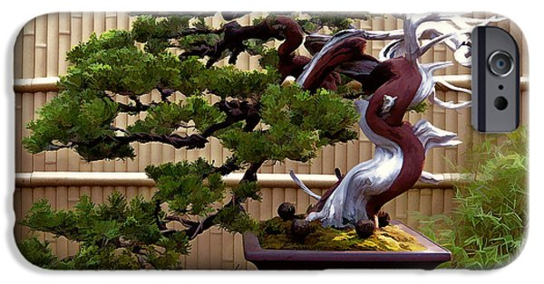 Bamboo Fence Paintings iPhone Cases - Bonsai Tree and Bamboo Fence iPhone Case by Elaine Plesser