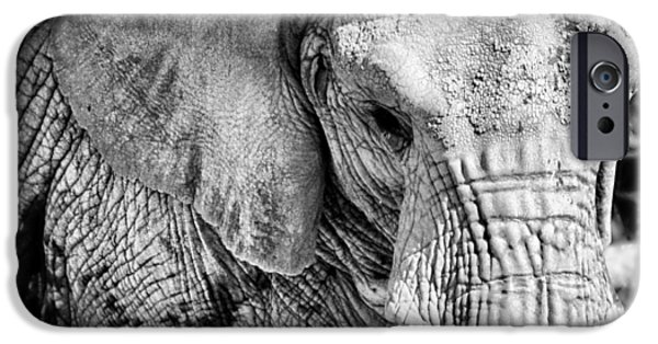 Elephants iPhone Cases - Breakfast Club iPhone Case by Andrea  Dizzy
