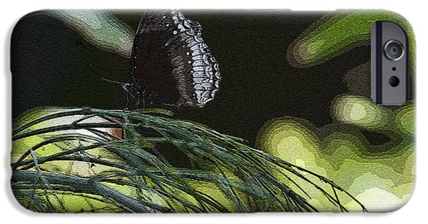 Graphic Design iPhone Cases - Butterfly Collection iPhone Case by Deborah Klubertanz