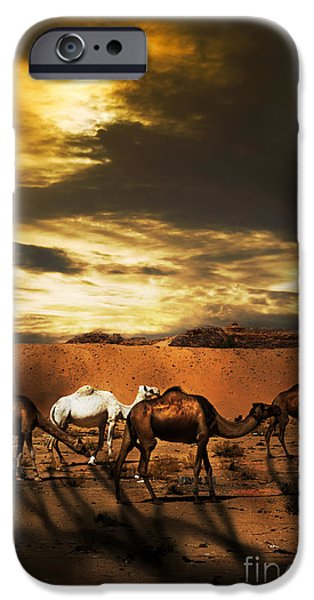 East Pyrography iPhone Cases - Camels iPhone Case by Jelena Jovanovic