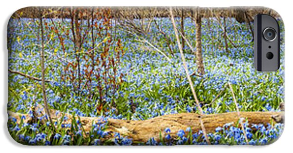 Meadow Photographs iPhone Cases - Carpet of blue flowers in spring forest iPhone Case by Elena Elisseeva