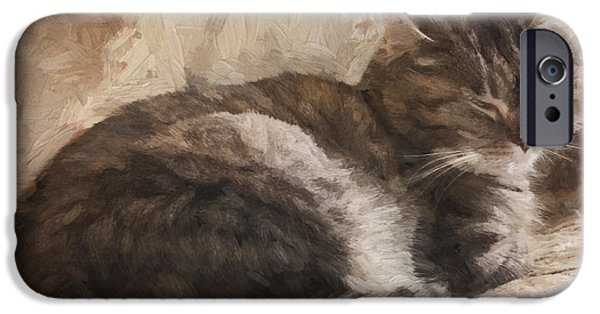 Bed Linens iPhone Cases - Cat on the Bed Painterly iPhone Case by Carol Leigh