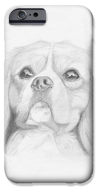 Cavalier iPhone Cases - Cavalier King Charles Spaniel iPhone Case by David Smith