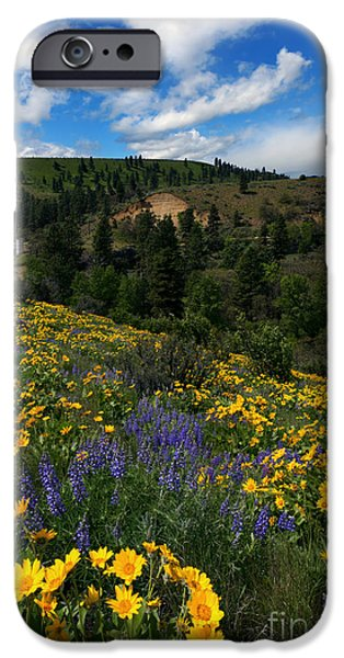 Silos iPhone Cases - Central Washington Spring iPhone Case by Mike Dawson