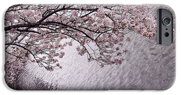 Cora Wandel iPhone Cases - Cherry Blossoms iPhone Case by Cora Wandel