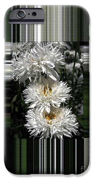 Fall iPhone Cases - Chrysanthemum named Crazy Daisy iPhone Case by J McCombie
