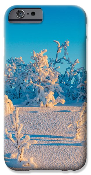 Wintertime Photographs iPhone Cases - Cold Winter In Lapland Sweden iPhone Case by Panoramic Images
