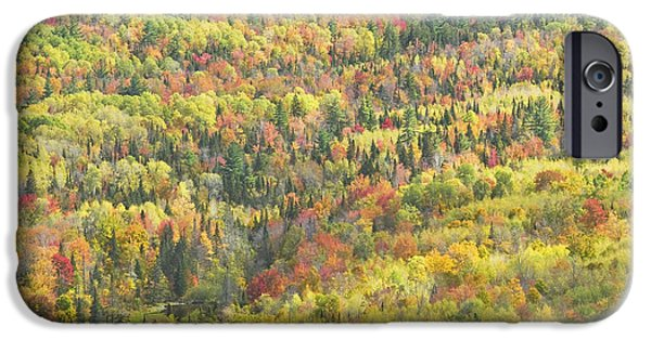 Maine Mountains iPhone Cases - Colorful Autumn Forest In Mount Blue State Park Weld Maine iPhone Case by Keith Webber Jr