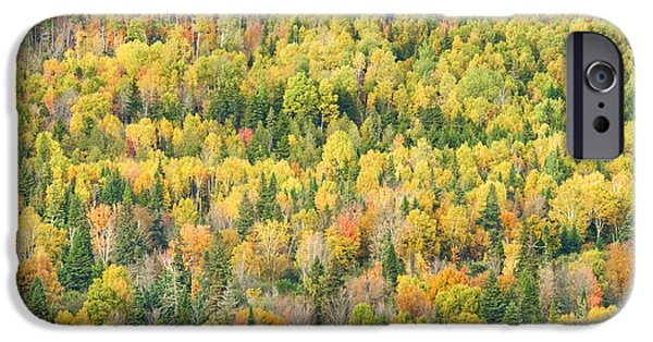 Maine Landscape iPhone Cases - Colorful Fall Forest Near Rangeley Maine iPhone Case by Keith Webber Jr