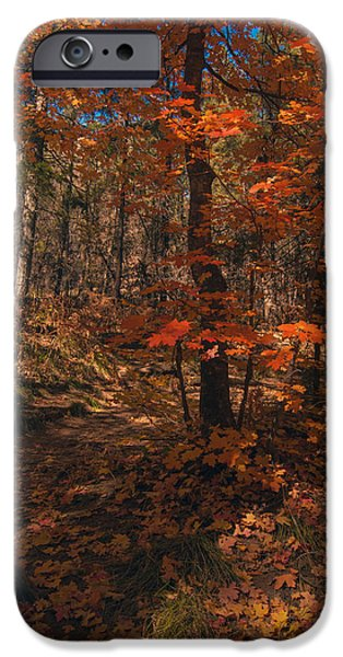 West Fork iPhone Cases - Colorful Path 2 iPhone Case by Tam Ryan