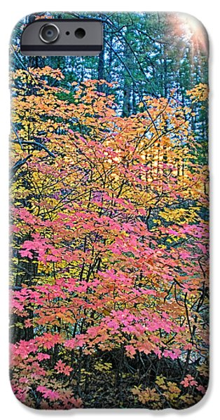 West Fork iPhone Cases - Colorful Rays iPhone Case by Brian Lambert