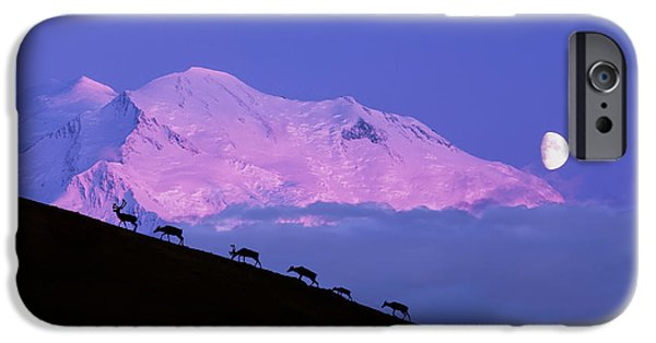 Moonscape iPhone Cases - Composite Silhouette Image Of A Herd Of iPhone Case by Michael DeYoung