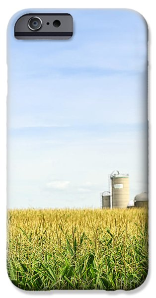 Silos iPhone Cases - Corn field with silos iPhone Case by Elena Elisseeva