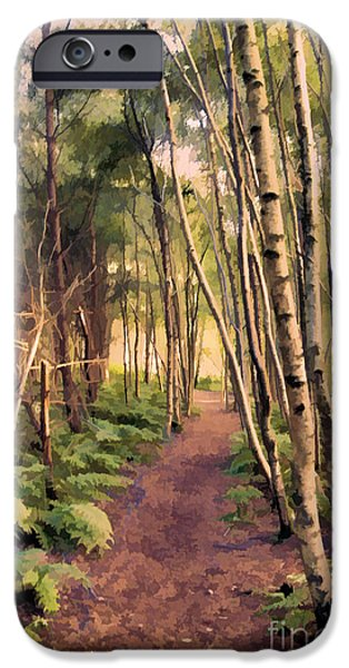 Country Lanes iPhone Cases - Country Lane iPhone Case by Amanda And Christopher Elwell