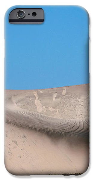 Coyote On Sand Dune iPhone Case by Mark Newman