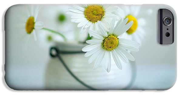 Daisy iPhone Cases - Daisy Flowers iPhone Case by Nailia Schwarz