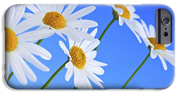 Summer iPhone Cases - Daisy flowers on blue background iPhone Case by Elena Elisseeva
