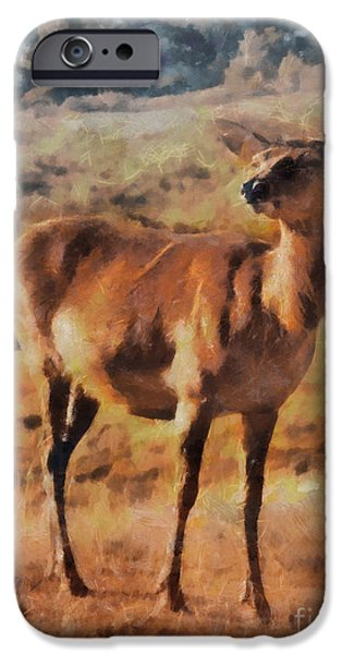 Highlands Digital iPhone Cases - Deer on mountain  iPhone Case by Pixel Chimp
