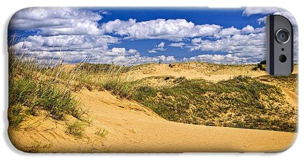 Sand Dunes iPhone Cases - Desert landscape in Manitoba iPhone Case by Elena Elisseeva