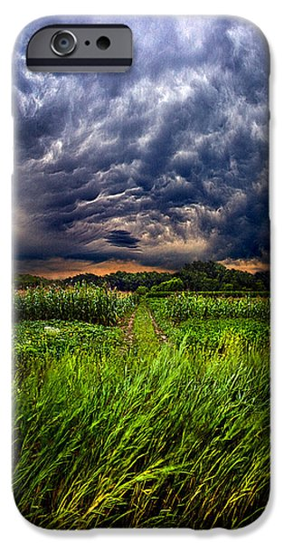 Meadow iPhone Cases - Disturbance iPhone Case by Phil Koch