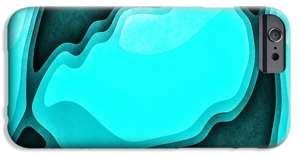 Dolphin Digital iPhone Cases - Dolphin Dance iPhone Case by David G Paul