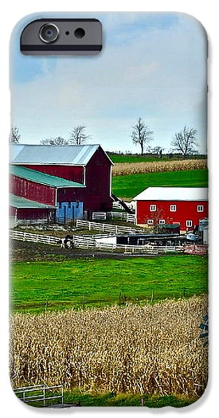 Down on the Farm iPhone Case by Frozen in Time Fine Art Photography