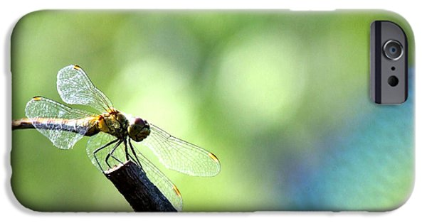 Bed Spread iPhone Cases - Dragonfly iPhone Case by Balica  Marius