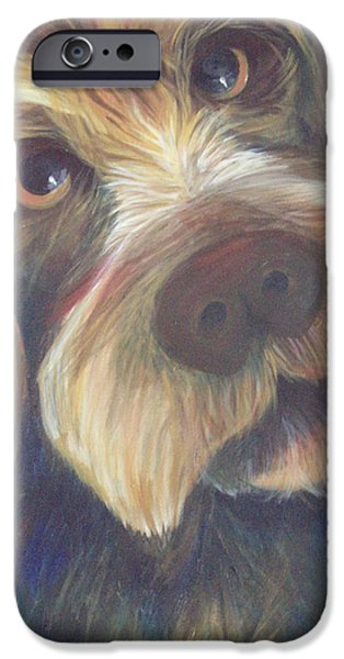 Dog Close-up Paintings iPhone Cases - Drahthaar Amadeus iPhone Case by Catt Kyriacou