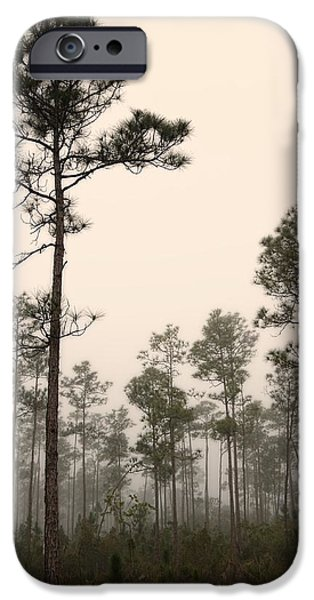Slash iPhone Cases - Early morning fog Landscape-2 iPhone Case by Rudy Umans