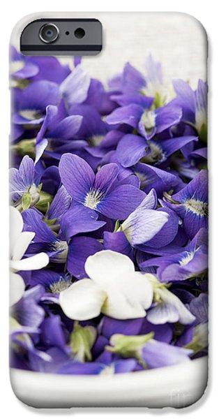 Violet iPhone Cases - Edible violets in bowl iPhone Case by Elena Elisseeva