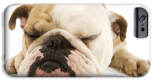 Recently Sold -  - Dog Close-up iPhone Cases - English Bulldog iPhone Case by Jean-Michel Labat