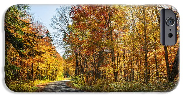 Asphalt iPhone Cases - Fall forest road iPhone Case by Elena Elisseeva
