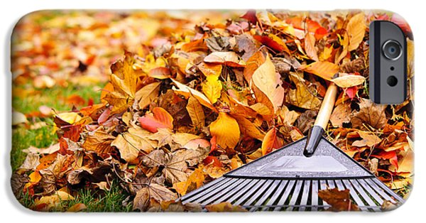 Handle iPhone Cases - Fall leaves with rake iPhone Case by Elena Elisseeva