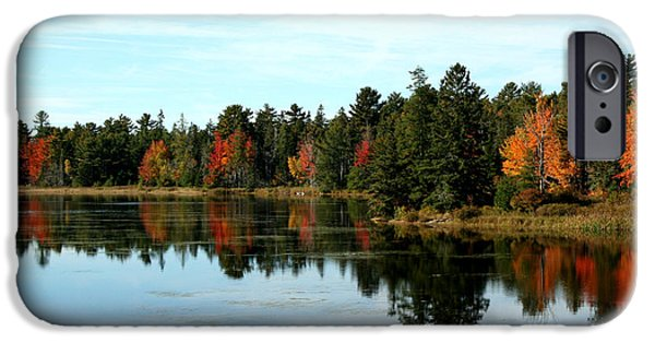 Maine iPhone Cases - Fall Pond iPhone Case by Linda  Jackson