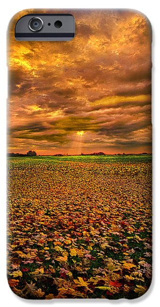 Rural iPhone Cases - Fallen iPhone Case by Phil Koch