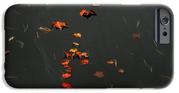 Ledge iPhone Cases - Falling Leaves iPhone Case by Marcia Lee Jones