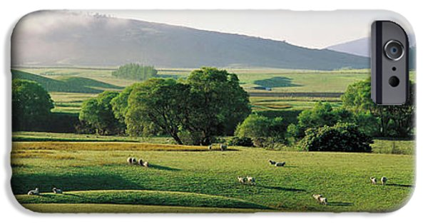 Mist iPhone Cases - Farmland Southland New Zealand iPhone Case by Panoramic Images