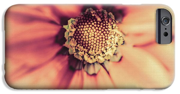 Close Focus Floral iPhone Cases - Flower Beauty II iPhone Case by Marco Oliveira