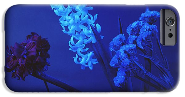 Absorb iPhone Cases - Flowers Under Blue Light iPhone Case by Andrew Lambert Photography