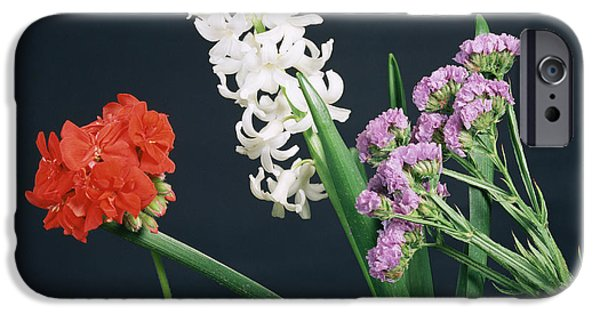 Absorb iPhone Cases - Flowers Under White Light iPhone Case by Andrew Lambert Photography