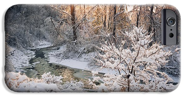 Creek iPhone Cases - Forest creek after winter storm iPhone Case by Elena Elisseeva