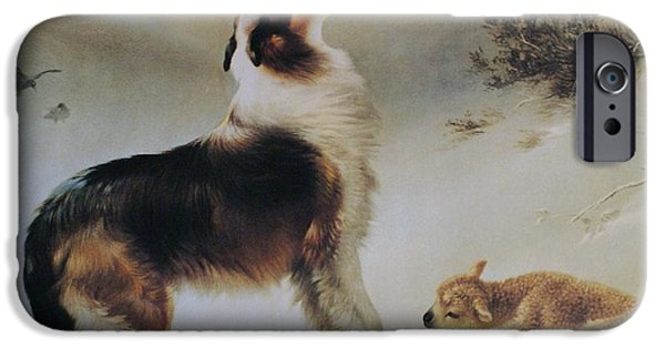 Best Sellers -  - Puppy Digital iPhone Cases - Found iPhone Case by Albrecht Schenck