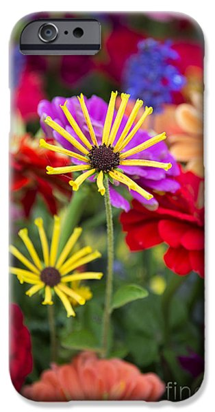 Annual iPhone Cases - Fresh Flowers iPhone Case by John Greim