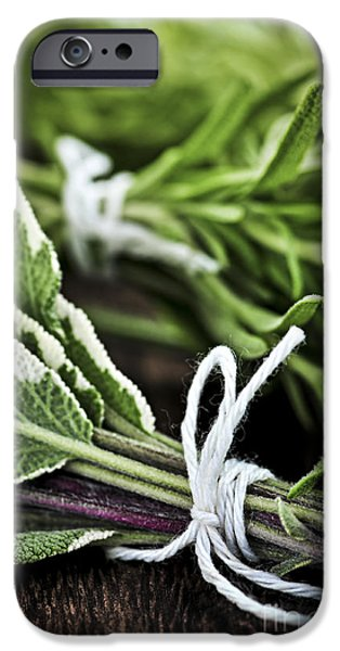Board iPhone Cases - Fresh herbs in bunches iPhone Case by Elena Elisseeva