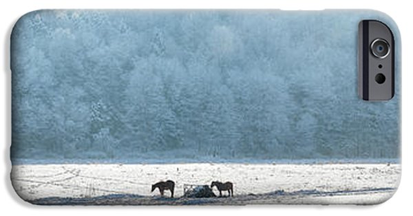 Horse iPhone Cases - Frosty Morning iPhone Case by Bill  Wakeley