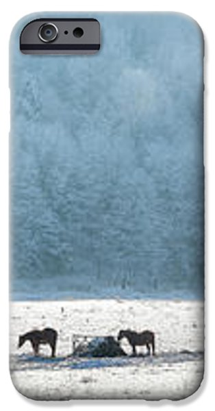 Frosty Morning iPhone Case by Bill  Wakeley