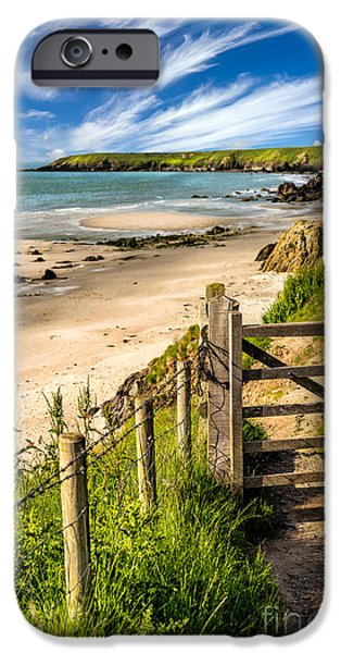 Seaweed iPhone Cases - Gate To Paradise iPhone Case by Adrian Evans