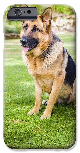 German Shepard iPhone Cases - German shepherd dog learning obedience training iPhone Case by Ryan Jorgensen